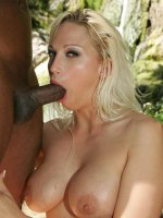 Blonde pornstar Nikki Hunter exposes her big tits outdoors and working a black wang